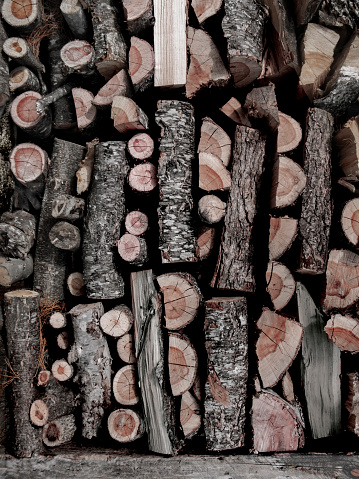 Lumber Industry「Stacked WOOD PILE in Massachusetts.」:スマホ壁紙(8)
