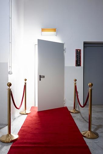Hotel Reception「Red carpet in front of open door」:スマホ壁紙(16)