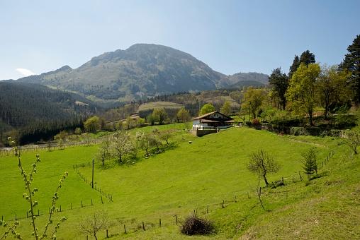 Steep「Basque farmhouse」:スマホ壁紙(17)