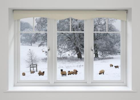 Window Frame「white windows and sheep in snow」:スマホ壁紙(9)