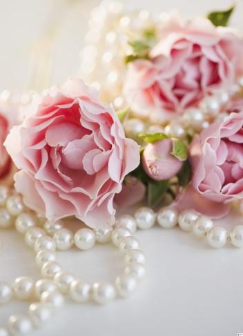 薔薇「Pearls and pink roses」:スマホ壁紙(0)