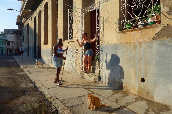 猫「Early morning in Old Havana」:写真・画像(13)[壁紙.com]