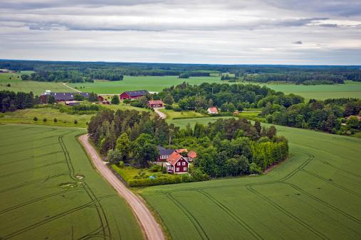 ハート「農場、フィールドにスウェーデン北ヨーロッパ」:スマホ壁紙(18)
