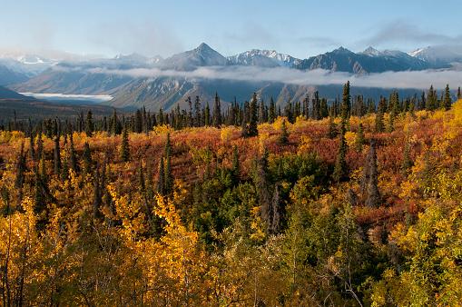 Performance Group「Scenic of autumn tundra, Chugach Mountains, AK」:スマホ壁紙(10)