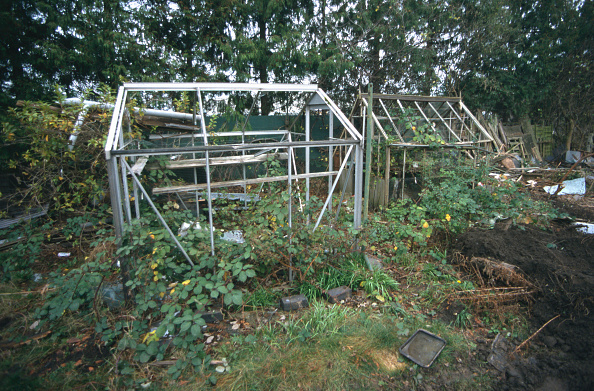Sparse「Derelict greenhouses and rubbish in overgrown and abandoned garden Cheltenham, United Kingdom」:写真・画像(16)[壁紙.com]