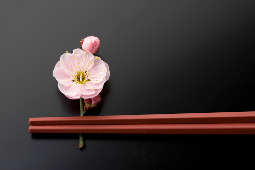 梅の花「Chopsticks and a plum blossom」:スマホ壁紙(9)