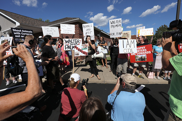 Big Cat「Memorial And Protest Held At Office Of Minnesota Dentist That Killed Famed Lion In Zimbabwe」:写真・画像(7)[壁紙.com]