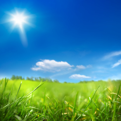 Environmental Conservation「sunny day and green field」:スマホ壁紙(19)
