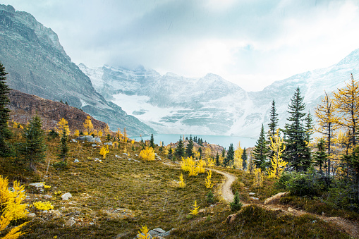 Yoho National Park「Scenery with lake and mountains in autumn, Yoho National Park, Field, British Columbia, Canada」:スマホ壁紙(8)