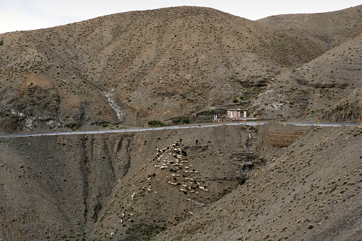 Atlas Mountains「Scenery with mountains and road at pass road between Ouarzazate and Marrakesh in High Atlas mountains」:スマホ壁紙(11)