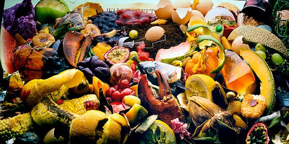 Compost「garbage」:スマホ壁紙(13)