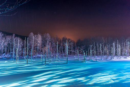 Hokkaido「shirogane blue pond light up in the winter」:スマホ壁紙(6)