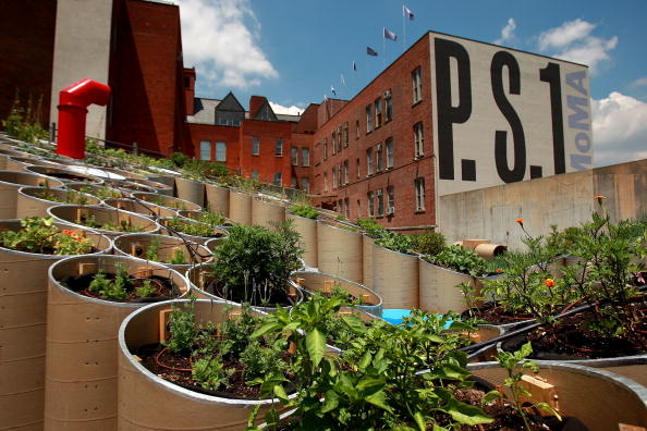 Queens - New York City「Courtyard Of Queens Art Gallery Transformed Into Public Farm Installation」:写真・画像(0)[壁紙.com]
