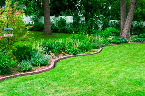 造園「裏庭と芝生」:スマホ壁紙(7)