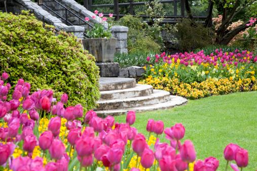 Ornamental Garden「Backyard Garden」:スマホ壁紙(5)