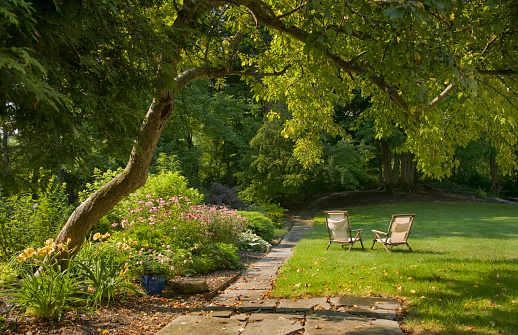 美しさ「Backyard Garden」:スマホ壁紙(7)