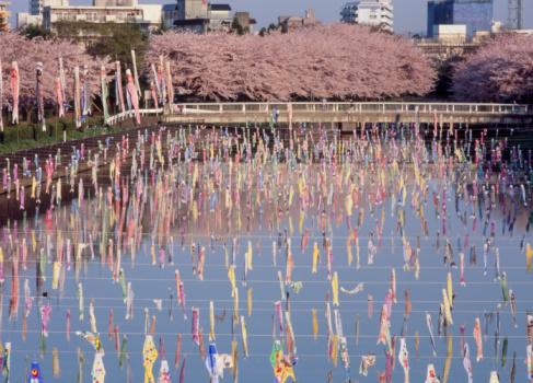 こいのぼり「Carp Streamer Festival, Tatebayashi, Gunma, Japan」:スマホ壁紙(10)