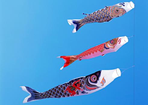 Koinobori「Carp Streamer」:スマホ壁紙(2)