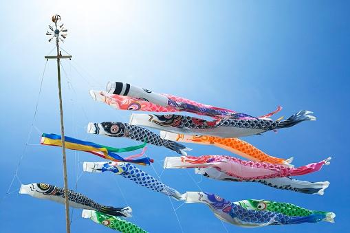 Carp「Carp streamers on Children's Day, Japan」:スマホ壁紙(5)
