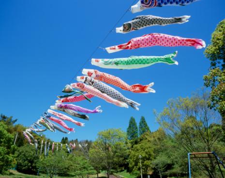 こいのぼり「Carp Streamers, Shibayama, Chiba, Japan」:スマホ壁紙(11)