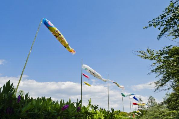 こいのぼり「Over 4,000 Carp Streamers Hung Over The River To Celebrate Children's Day」:写真・画像(9)[壁紙.com]