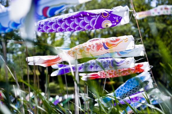 こいのぼり「Over 4,000 Carp Streamers Hung Over The River To Celebrate Children's Day」:写真・画像(10)[壁紙.com]