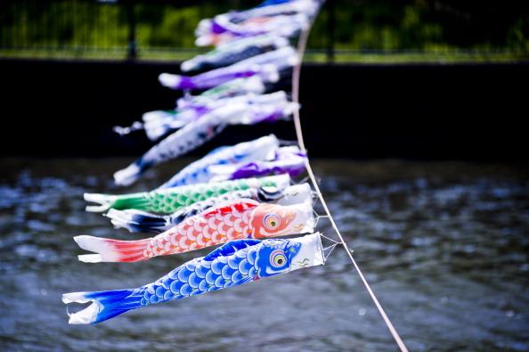こいのぼり「Over 4,000 Carp Streamers Hung Over The River To Celebrate Children's Day」:写真・画像(8)[壁紙.com]