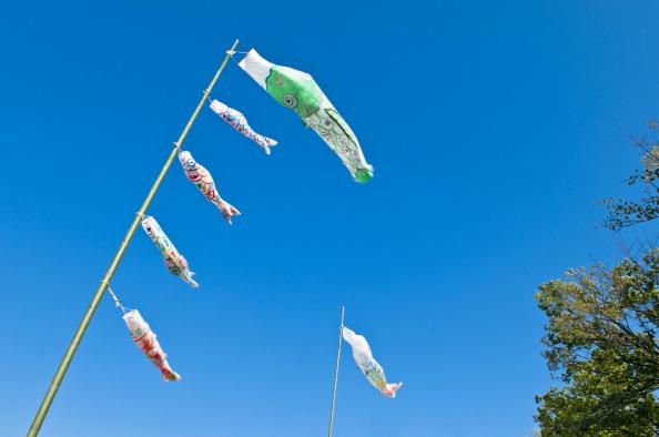 こいのぼり「Over 4,000 Carp Streamers Hung Over The River To Celebrate Children's Day」:写真・画像(6)[壁紙.com]