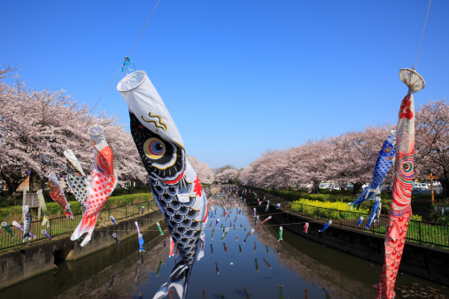 こどもの日「Carp Streamers Decorating River」:スマホ壁紙(7)