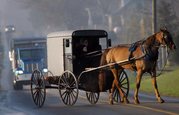 Horse「Months After Tragedy, Amish Children Get New Schoolhouse」:写真・画像(0)[壁紙.com]