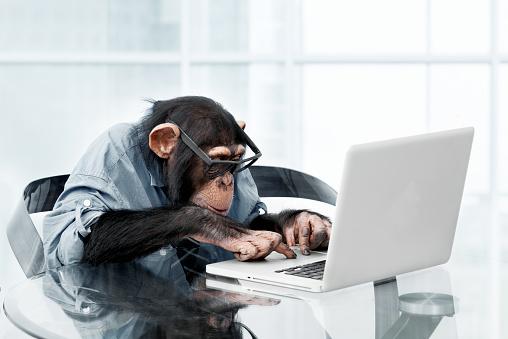 Nerd「Male chimpanzee in business clothes」:スマホ壁紙(18)