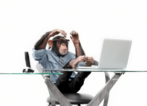 Nerd「Male chimpanzee in business clothes」:スマホ壁紙(17)