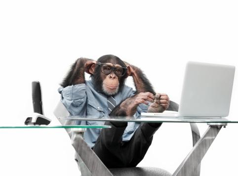 Nerd「Male chimpanzee in business clothes」:スマホ壁紙(1)