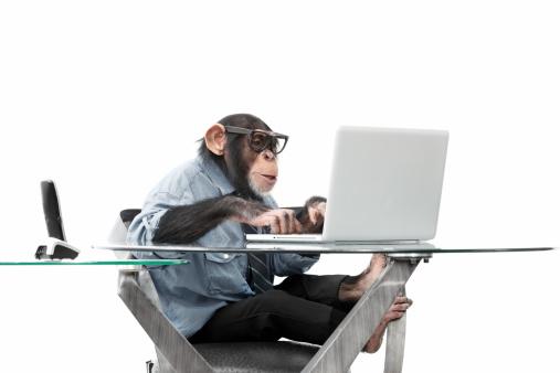 Nerd「Male chimpanzee in business clothes」:スマホ壁紙(5)