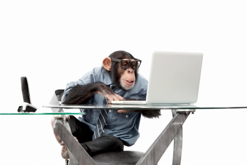 Businessman「Male chimpanzee in business clothes」:スマホ壁紙(3)