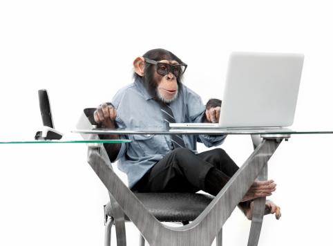 Nerd「Male chimpanzee in business clothes」:スマホ壁紙(0)