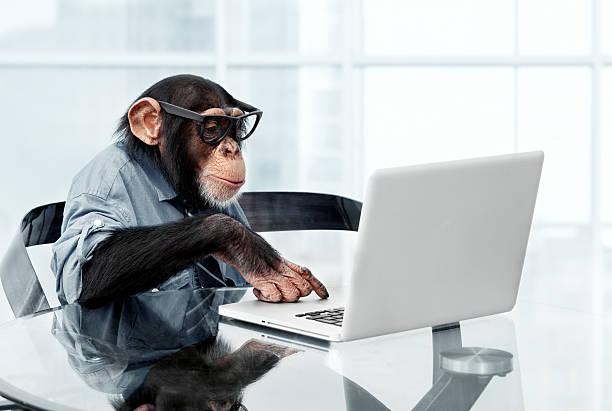 Male chimpanzee in business clothes:スマホ壁紙(壁紙.com)