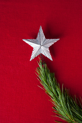 Tree Topper「Silver star on branch of Christmas tree」:スマホ壁紙(17)