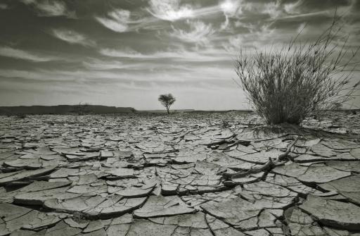 Awbari Sand Sea「Arid Dry Desert Landscape, Black and White」:スマホ壁紙(2)
