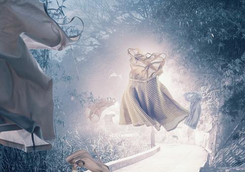 Imagination「levitation of clothing」:スマホ壁紙(3)