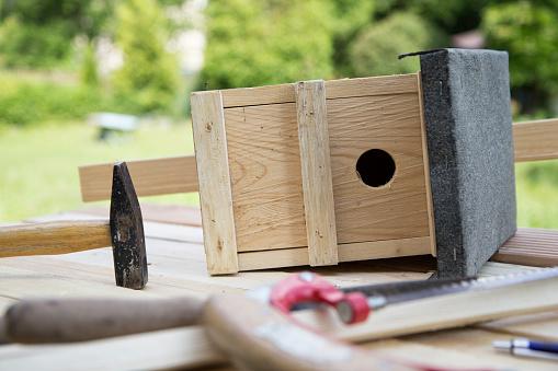 鳥の巣「Building up of a birdhouse」:スマホ壁紙(17)