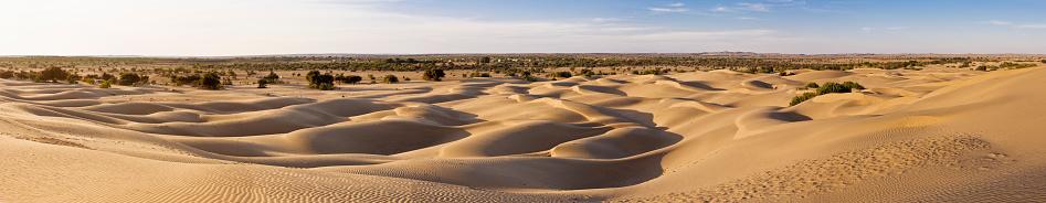 Rajasthan「Sand dunes near the village」:スマホ壁紙(13)
