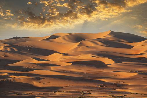 Rolling Landscape「Sand dunes in remote desert」:スマホ壁紙(17)