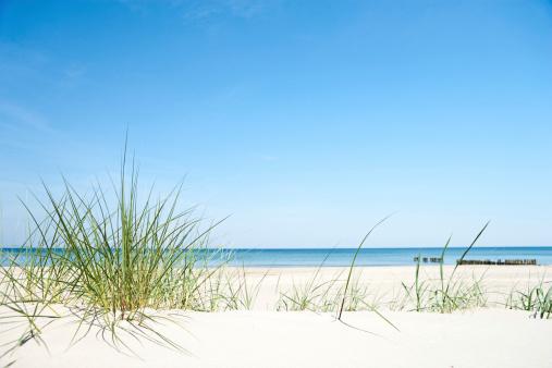 Baltic Sea「Sand dunes」:スマホ壁紙(15)
