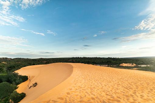 Nature Reserve「Sand dunes in Jalapão State Park, Tocantins」:スマホ壁紙(18)