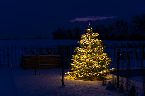 Austria「Christmas in GLR - christmas tree with snow and lights in garden」:スマホ壁紙(9)