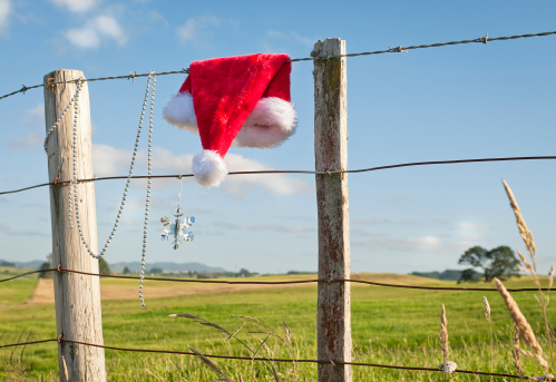 Wooden Post「Christmas in Rural New Zealand」:スマホ壁紙(12)