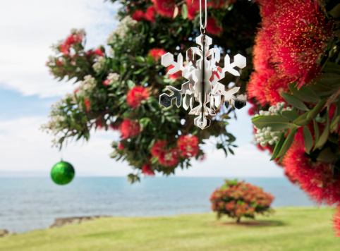 New Zealand「Christmas in New Zealand」:スマホ壁紙(4)