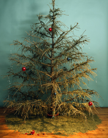 Needle - Plant Part「Christmas is Over」:スマホ壁紙(14)