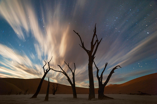 Milky Way「Stars and storm clouds over the dead acacia trees in Dead Vlei, Sossusvlei, Namibia」:スマホ壁紙(6)